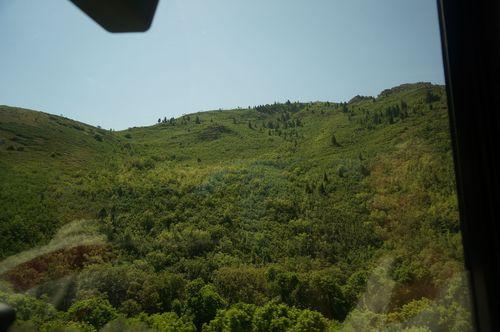 Landscape1_SLC_2013-07-31