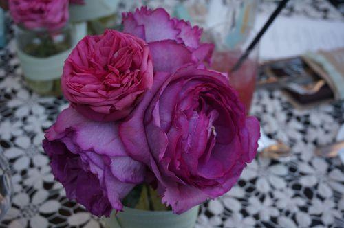 Rose_2013-07-31