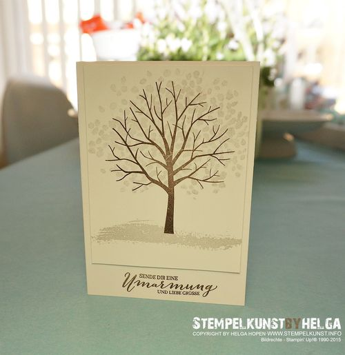 1_Winter#card#stampinup#2015-02-06