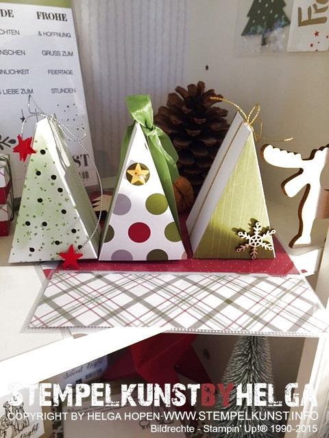 1#tannenbaum#christmastree#2015-09-06