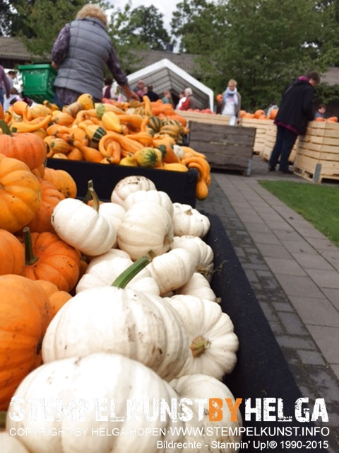 5#kuerbiss#pumpkin#box#2015-09-20