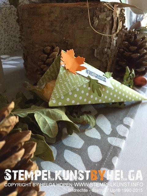 3#herbst#autumn#kuerbis#pumpkin#2015-10-02