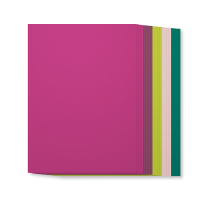 144253G_Incolor_cardstock