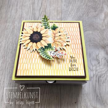 3#box-pizza#goodie#herbst#winter#2017-08-22