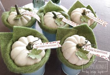 2#white#pumpkin#weiss#kuerbiss#deko#2017-09-18