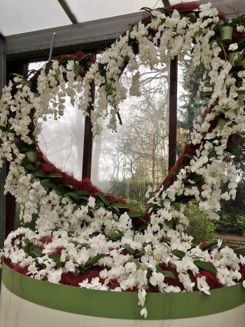 18#flowers#keukenhof#lisse#orchideen#orchids#stempelkunst-by-helga#2018-04-03