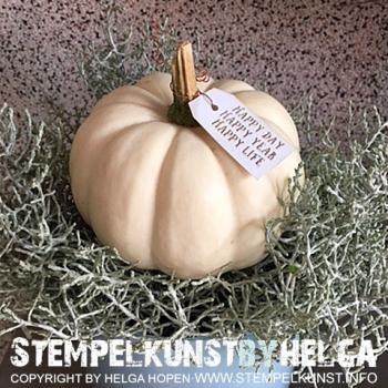 Fb#3#kuerbis#pumpkin#2016-09-18