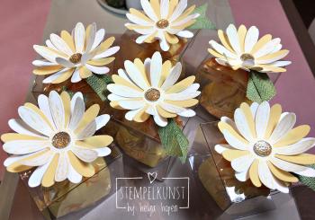 1#goodie#flower#gaensebluemchen#2017-06-07