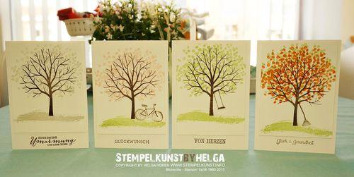 5_winter_fruehling_sommer_herbst#card#stampinup#2015-02-06
