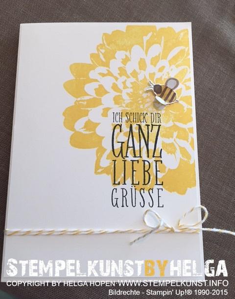 1#ganzliebeguesse#2015-06-28