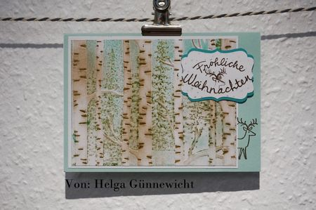 18#helga_guennewicht#2015-12-26