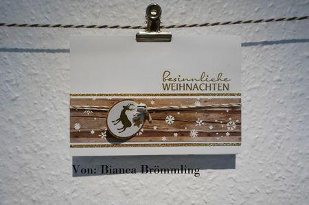 53#bianca_broemmling#2015-12-26