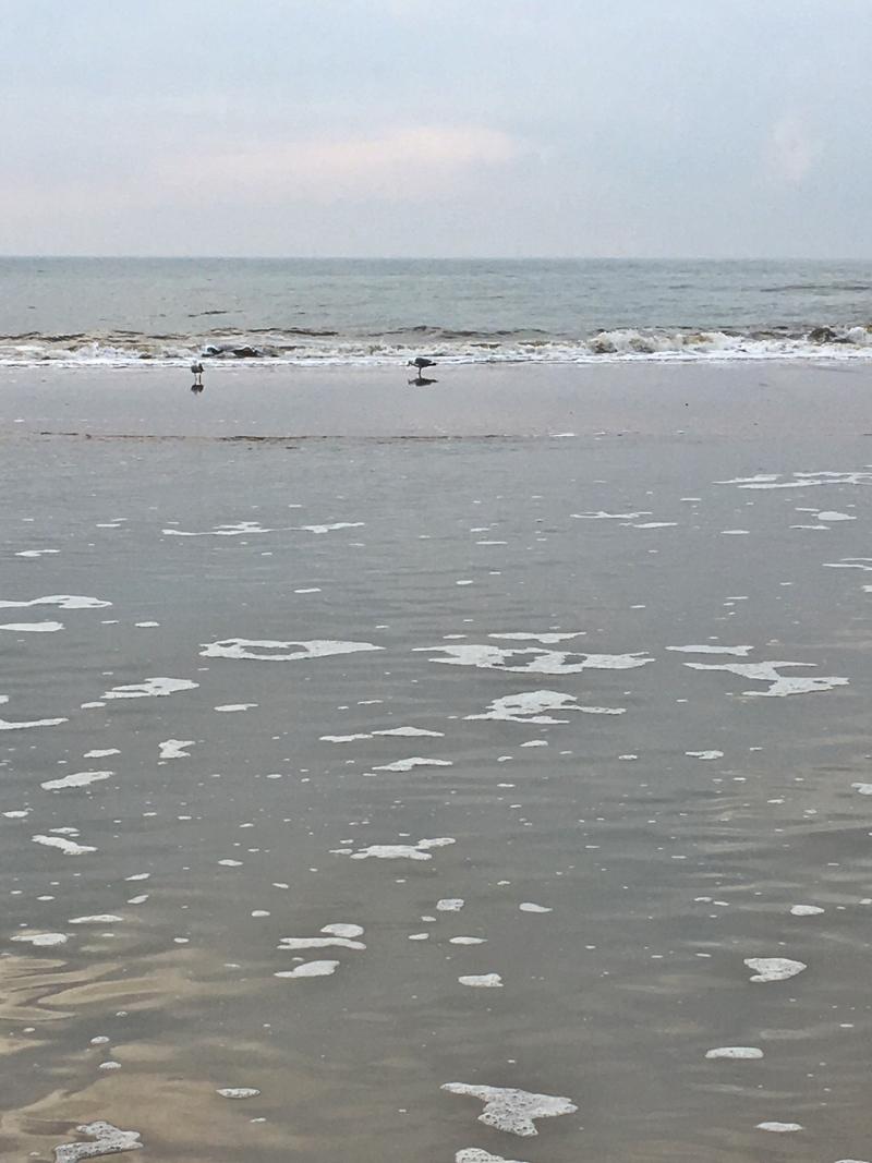 21#strand#beach#noordwijk#ostern#easter#2018-04-03