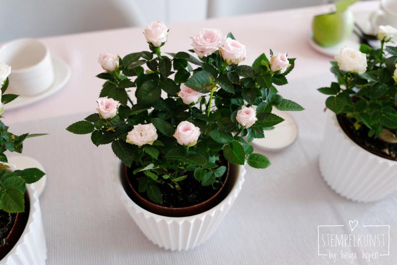 2#deko#rosen#cafeLounge#2018-06-24