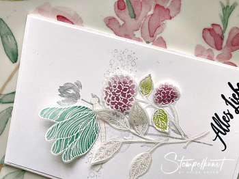 2#suite_samplers_vellum_embossing
