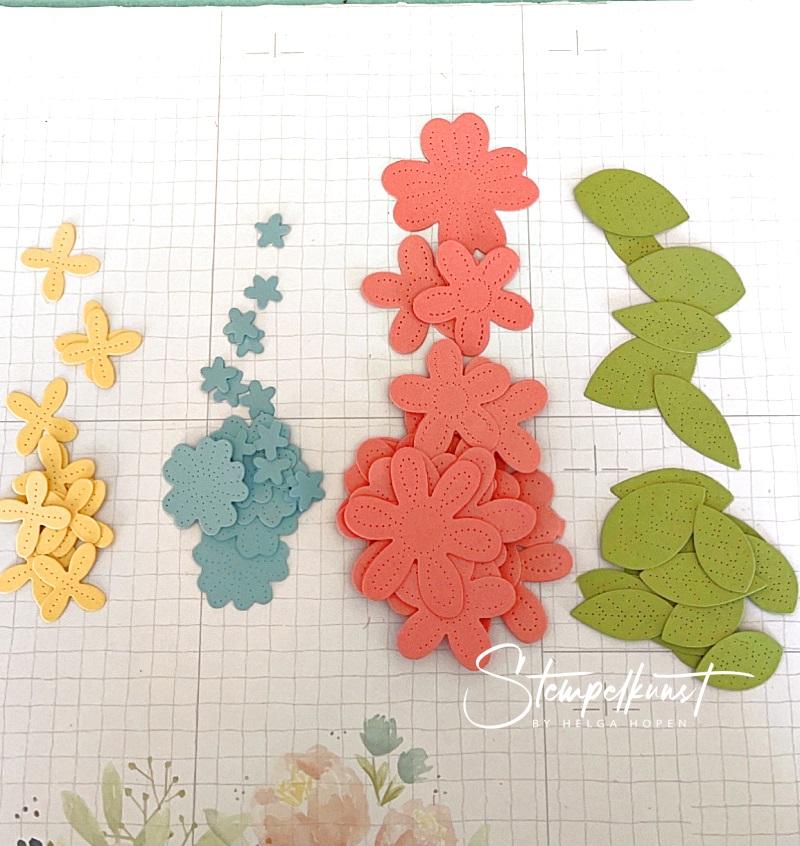 2#blüten-flowers-spring-fruehling