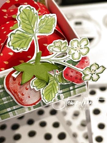 4#erdbeere-schachtel