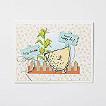 Produktpaket Das Gelbe vom Ei und Hu(h)ndert gute Wünsche_Individuelles-Beispielprojekt_5